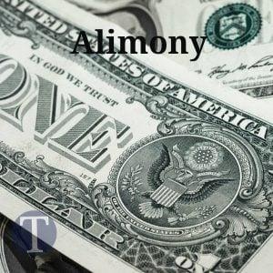 Thomann law firm alimony support alpharetta ga